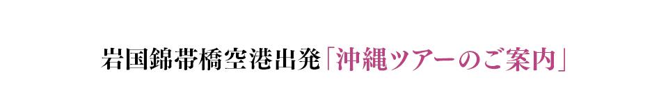 岩国錦帯橋空港出発「沖縄ツアーのご案内」